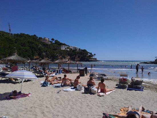 Camp de Mar (Peguera, Spanien) - omdömen - TripAdvisor