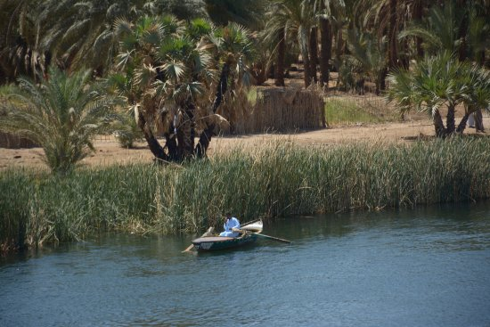 On The Go Tours - Day Tours : Cruising the Nile