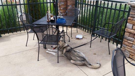 Bloomsburg, PA: spacious patio seating
