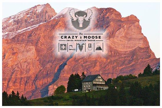 Crazy Moose: Le restaurant Crazy-Moose au coeur des Alpes