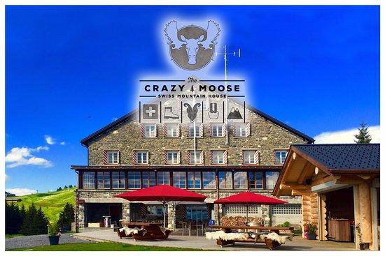 Crazy Moose: Le restaurant Crazy-Moose et sa terrasse panoramique
