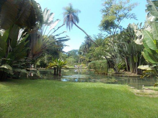 Emporio Jardim at IMS: Muita natureza