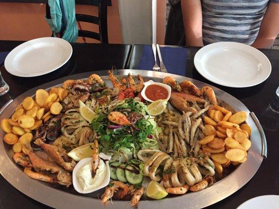 Fisch Darmstadt