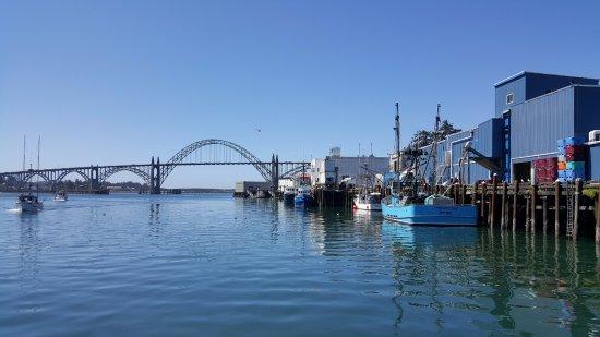 Newport's Historic Bayfront: Newport bridge and boats offloading fish