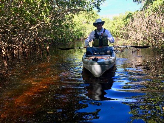 Gulf Coast Kayak: Jim, our tour guide