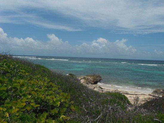 Tiko Tiko Cruises : Other side of the island--you don't swim here