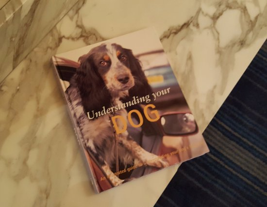 Kimpton Hotel Monaco Seattle: Dog friendly - complimentary reading material in the lobby