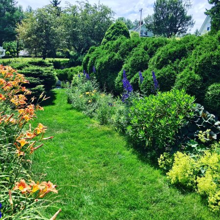 Lincolnville, Μέιν: The Perennial garden continues to bloom. spouterinnbnb.com @SpouterInnBnB