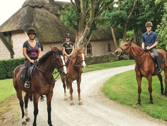 Clonshire Equestrian Centre: Grandkids came to visit.