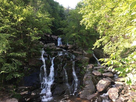 Haines Falls Photo