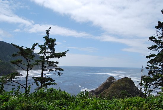 Florence, OR: Looking SSW from Heceta Head Lighthouse
