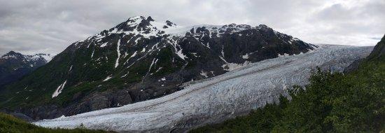 Kenai Fjords National Park, Alaska: Exit glacier seen from Marmot meadow