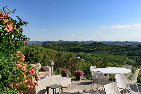 Travel Langhe  Wine Tours Image