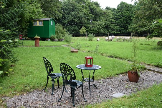 Powis House : Rustige uitgestrekte tuin
