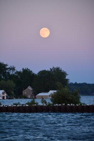 Sodus Point Beach Park: Moon Rise from the park