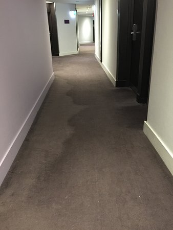 Vibe Hotel Sydney: 5th floor hall carpeting stain