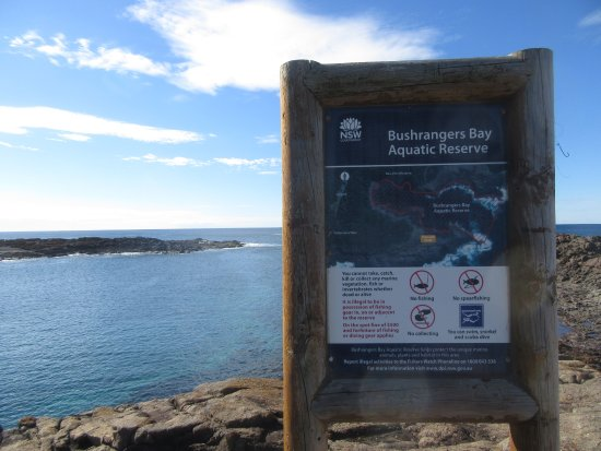 photo5.jpg - Picture of Bass Point Reserve, Shellharbour ...