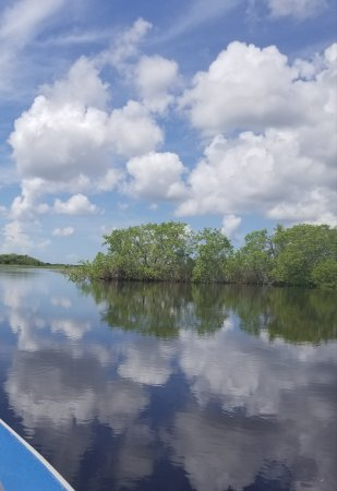 Capt Mitch's - Everglades Private Airboat Tours: 20170715_125006_large.jpg