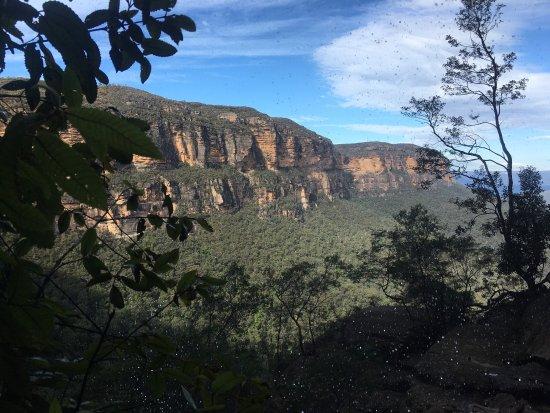 Wentworth Falls, Australia: photo6.jpg