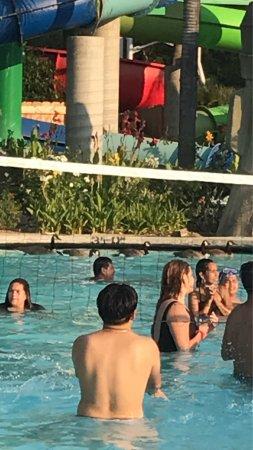 Six Flags Hurricane Harbor : What do ducks say in the pool / Que opinan de los patos en la piscina o alberca. Julio 15 del 20