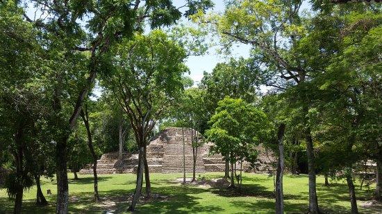 Cahal Pech Mayan Ruins & Museum: 20170715_122432_large.jpg