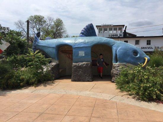 National Mississippi River Museum & Aquarium: photo7.jpg