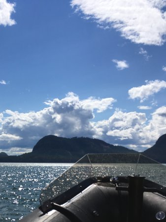 Campbell River, Kanada: View from Zodiac...