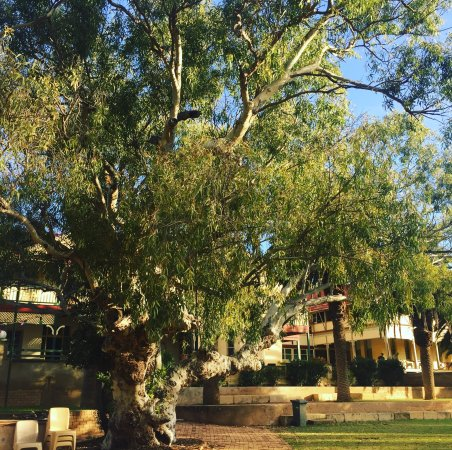Dongara, Australia: The Priory Hotel