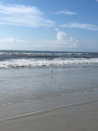 Bryn Mawr Ocean Resort: photo1.jpg