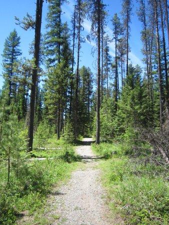 Jewel Lake Provincial Park: Trail