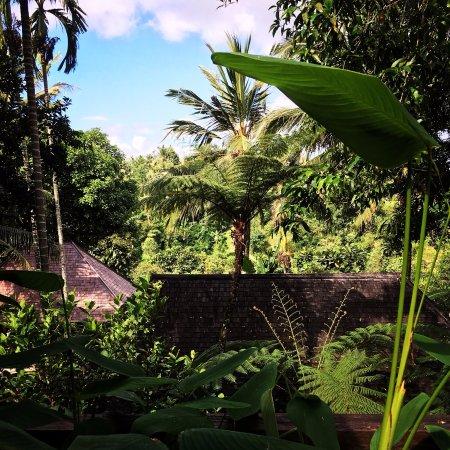 Komaneka at Tanggayuda: courtyard pool villa