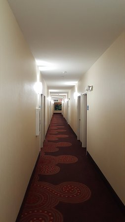 DeFuniak Springs, FL: Hallways, no worn carpet and stained wallpaper.
