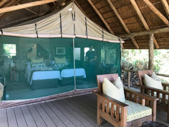 Частный заповедник Тимбавати, Южная Африка: photo2.jpg