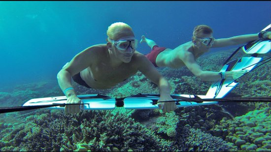 Corallina Tours