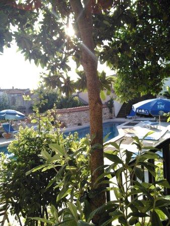Villa Konak Hotel Kusadasi: IMG_20170716074851_large.jpg