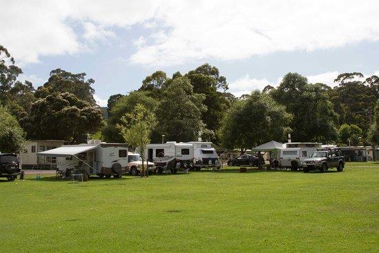 Warburton, Australië: Caravan Sites in the Park