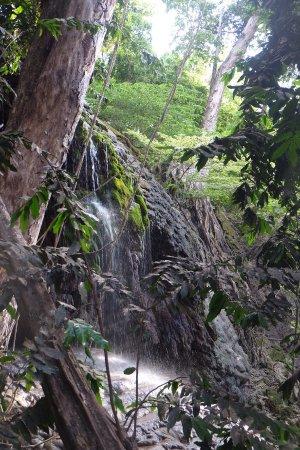 many moods of christmas island national park