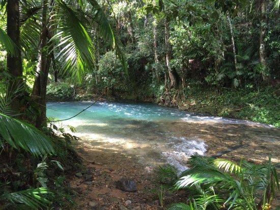 Port Douglas Tropical Trips