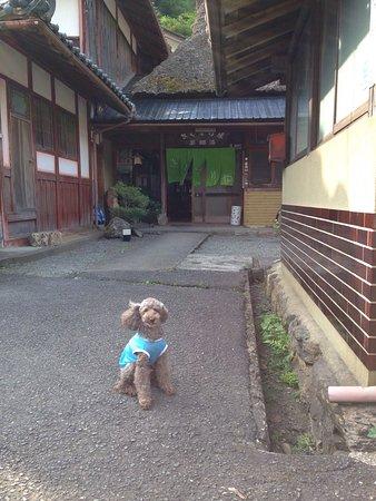 Nantan, Japón: きぐすりや