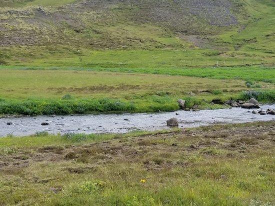 Mosfellsbaer, IJsland: 20170715_104803_large.jpg