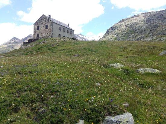 Province of Sondrio, İtalya: 20170715_121127_LLS_large.jpg