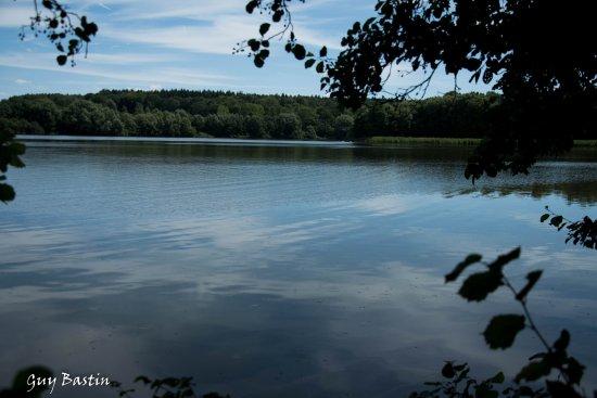 Fosses-la-Ville, Бельгия: Le lac