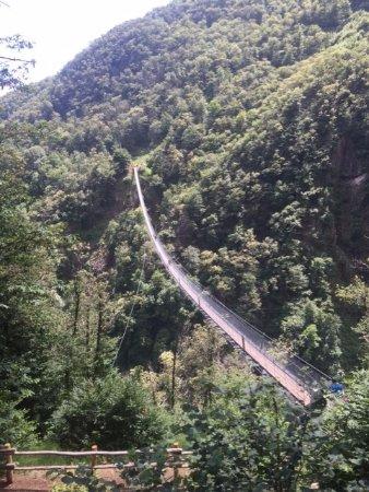 Sementina, Switzerland: Vista del ponte