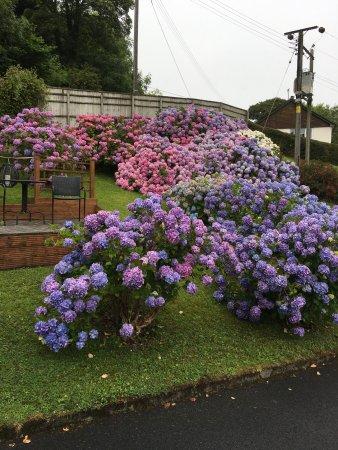 Amroth, UK: photo0.jpg
