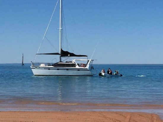 Broome Whale Watching