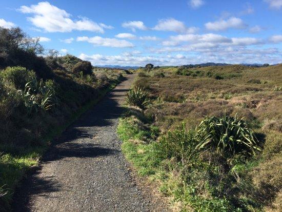 Opotiki, Neuseeland: Dunes Trail