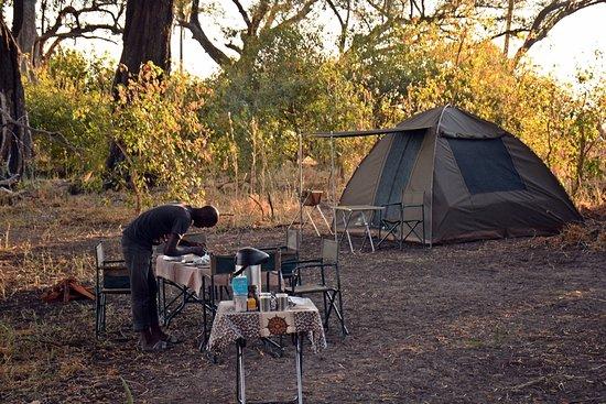 Okavango Delta: Camping safari with Lelobu