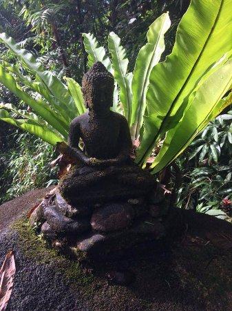 Diwan, أستراليا: Sitting Buddha