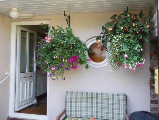 Christmas in the conservatory - Изображение Ферс Гостевой Дом, Хей-он-Уай