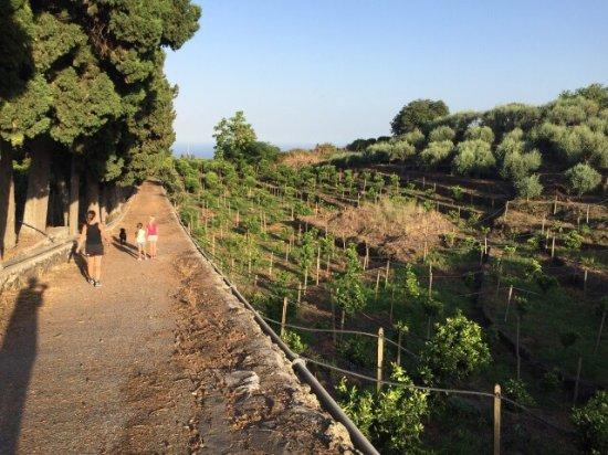 Santa Venerina, Italy: photo1.jpg